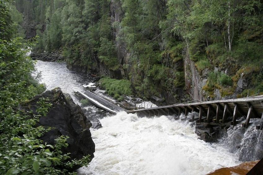 Show item 2 of 7. Rovaniemi: Auttiköngäs Nature Trail