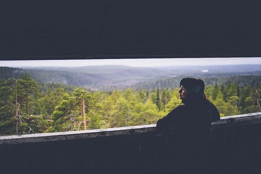Show item 5 of 7. Rovaniemi: Auttiköngäs Nature Trail