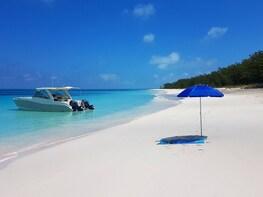 Rose Island Snorkel and Beach Break