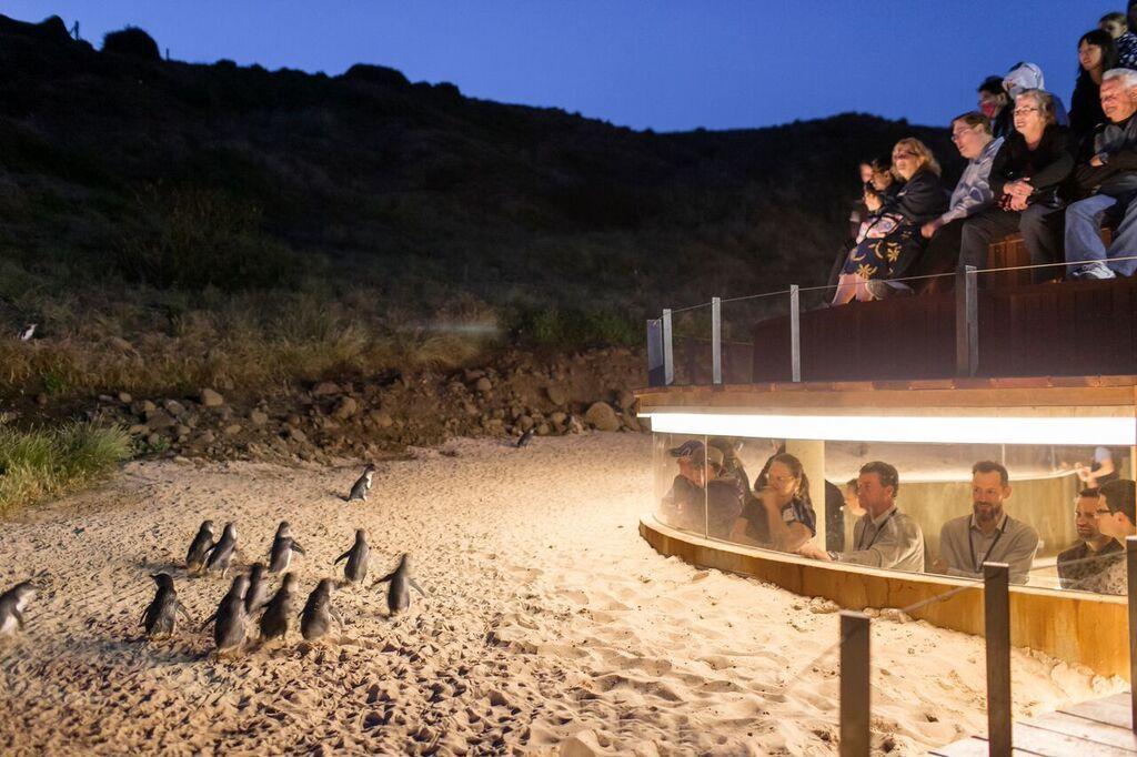 2 Day Great Ocean Road Mornington & Penguin Parade Tour
