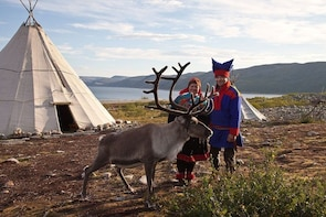 Rovaniemi: Visit Sami Reindeer Farm and Forest Picnic