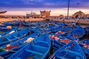 Premium day trip to Essaouira from Marrakech with a guide