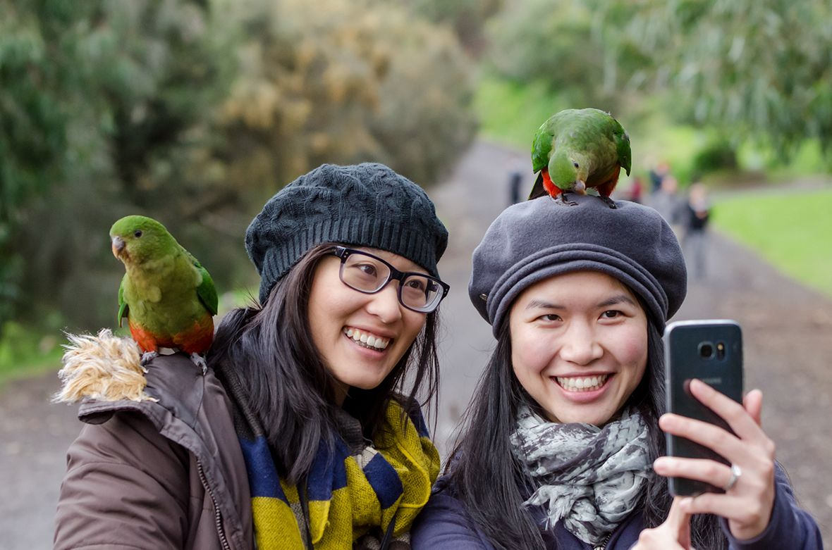Pair of women with birds at a park in Australia