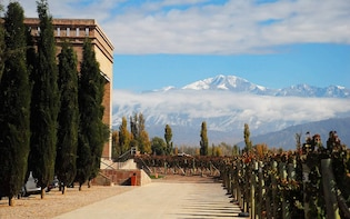 Mendoza wine tour, visit featured wineries in Lujan de Cuyo