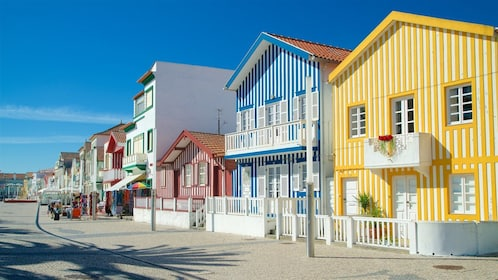 Colorful buildings in the Aveiro Municipality