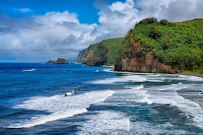 Hamakua Coast Safari ( Big Island )
