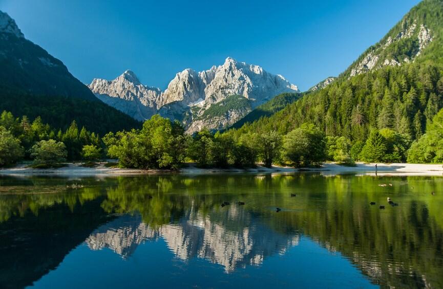 Show item 7 of 7. Lake in Kranjska Gora, Slovenia