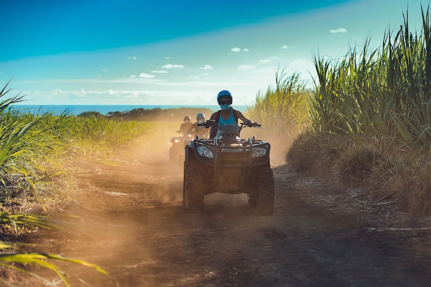 Show item 3 of 6. People ride ATVs along dirt road surrounded by long grass in Mauritius