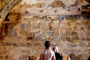 Private tour The Desert Castles and Azraq Oasis from Amman
