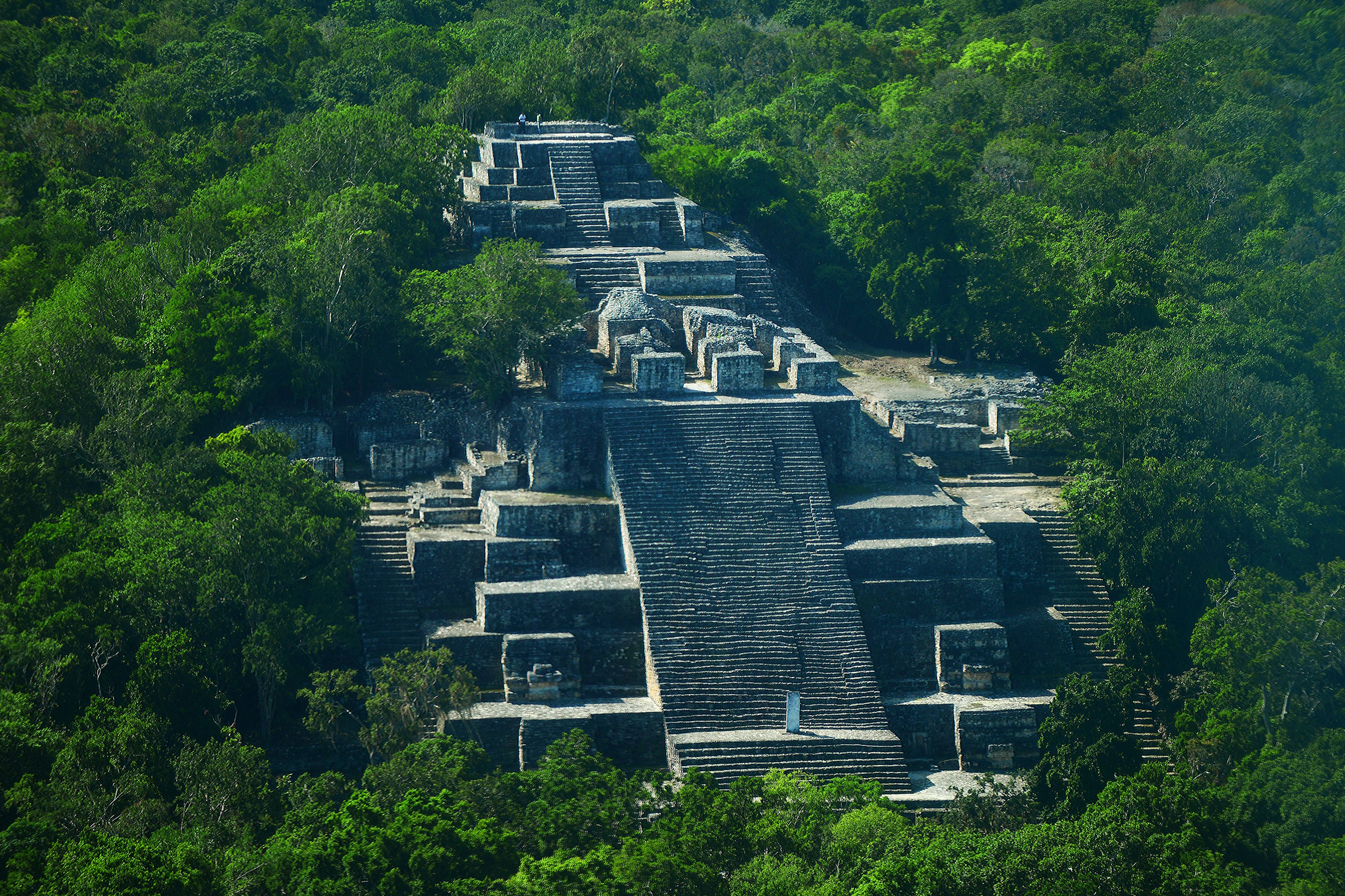 Calakmul Mayan City tour in Campeche