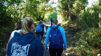 Pacaya Volcano Hike Experience from Guatemala City