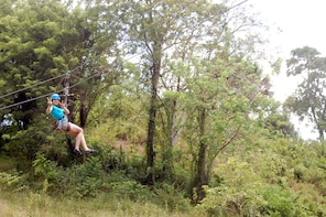 Countryside Zip Line Adventure