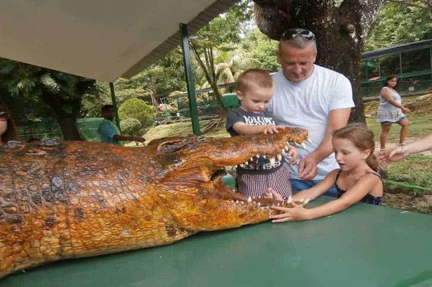 Show item 1 of 8. Crocodile Adventureland Langkawi Admission Ticket