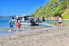 5 hour Bay of Islands Cruise and Island Tour