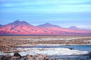 Atacama Salt Flat and Altiplanic Lagoons Day Tour