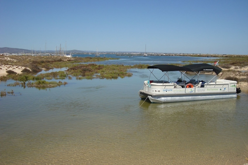 Show item 1 of 10. Ria Formosa Islands Small Group Boat Trip from Faro