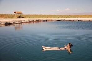 Cejar & Tebinquinche Lagoons Tour from San Pedro de Atacama