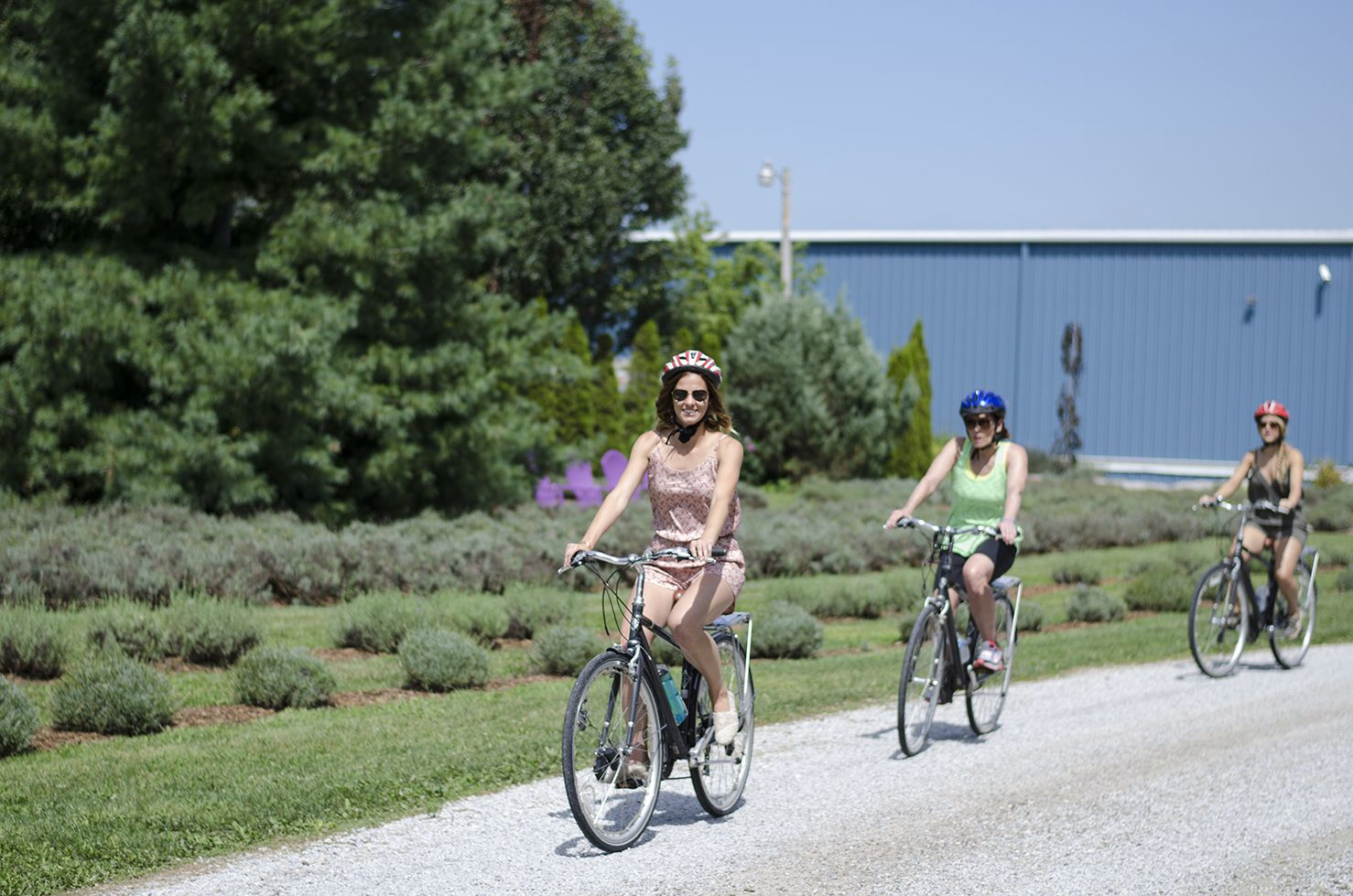 Indulge in Wine Country on the Wine Trail Ride Cycling Tour