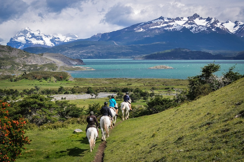 Group horseback riding in Chile