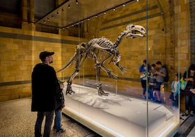 Natural History Museum London Family Tour