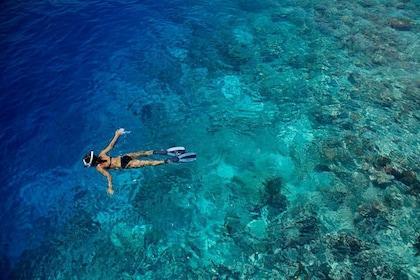 snorkeling-in-fujairah.jpg