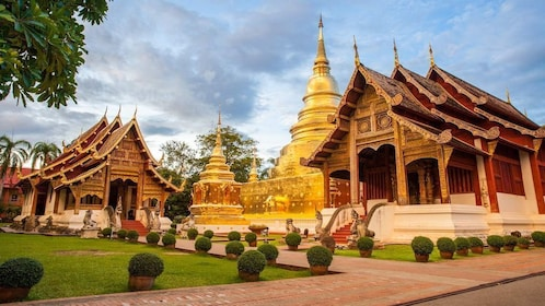 Chiang Mai Highlights Lifestyle Tour