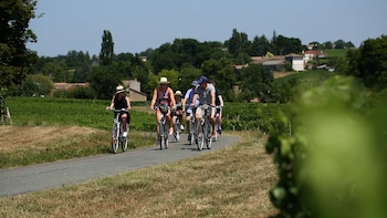 Half-Day E-Bike tour to Clos-Lucé & the Loire vineyards