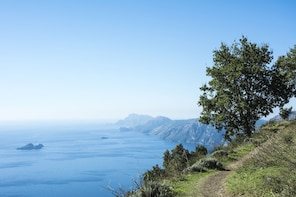 Path of Gods: Hiking Tour from Sorrento