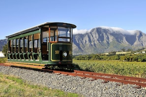 Explore the Winelands region and wine tasting
