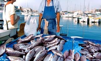 Private Market tour + Cook + Dine in local home in Cagliari