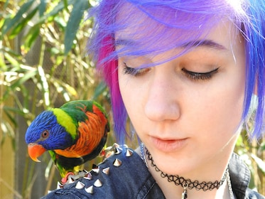 Young woman with a colorful bird on her shoulder at Nashville Zoo