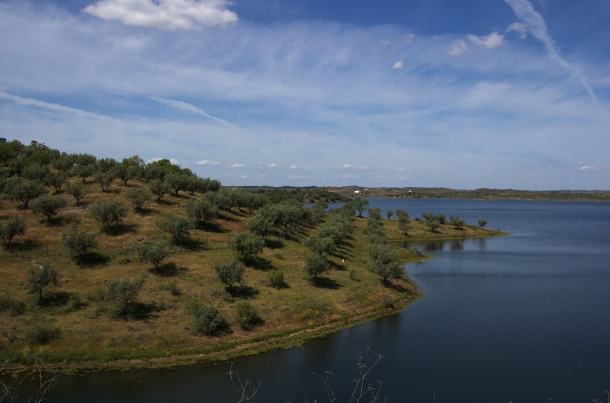 Full-Day Tour to Alqueva Dam and Moura with Boat Cruise