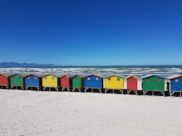 Cape of Good Hope, Simons Town and Kirstenbosch