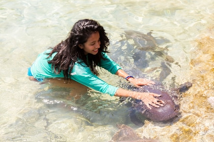 Woman pets sea creature in shallow waters of Exuma, Bahamas