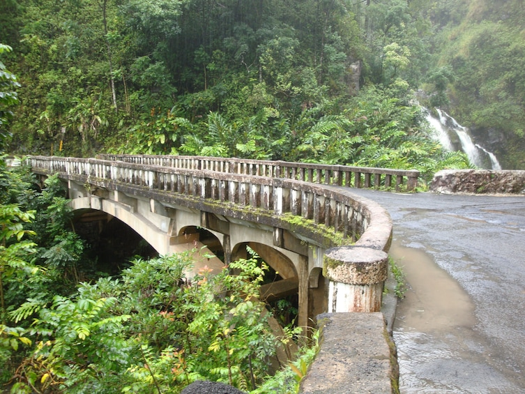 Show item 4 of 10. Small Group Luxury Road to Hana Waterfalls & Lunch