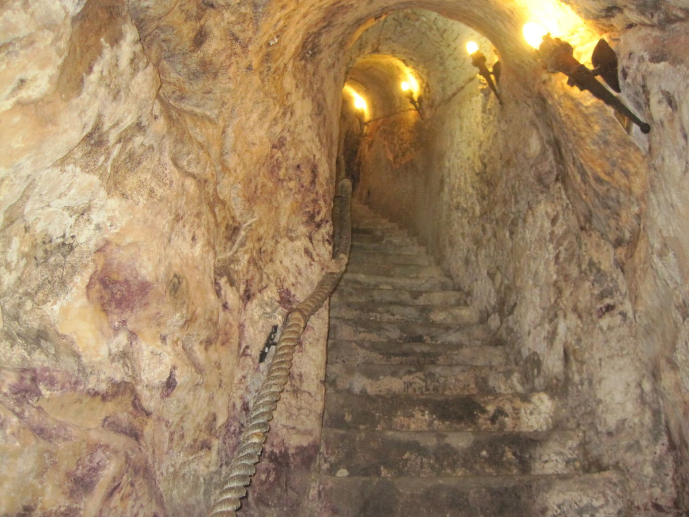 Guided Tour to Ribera del Duero and Wine Tasting from Madrid
