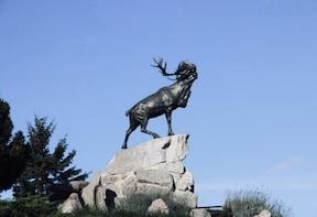 Half-DayTour : Beaumont-Hamel-Newfoundland Memorial - WW1