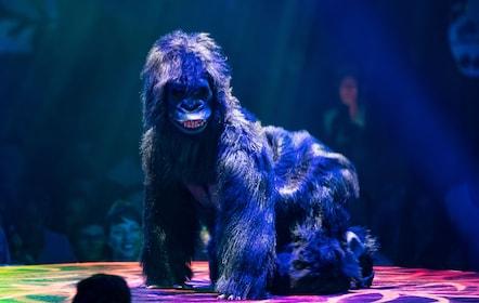 Performance at Absinthe Vegas