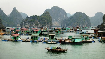 2 Day Halong Bay, Bai Tu Long Bay & Superior Junk Cruise