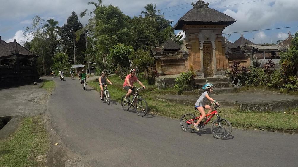 Show item 1 of 8. Kintamani Cycling Tour Bali