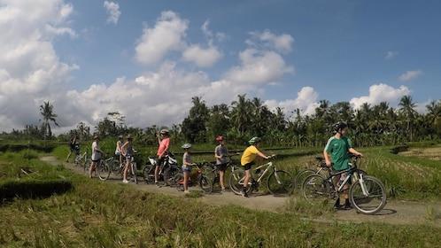Kintamani Cycling Tour Bali