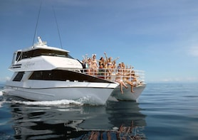 Seastar Luxury Outer Great Barrier Reef Island and Reef Tour