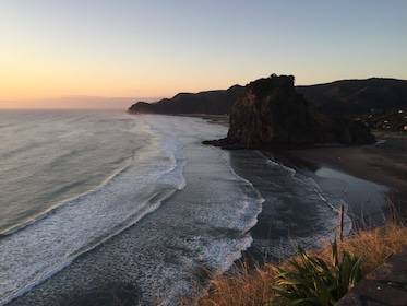 Full-Day Piha and Waitakere Small Group Tour from Auckland