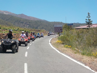 Group quad tour to Las Cañadas del Teide