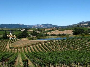 alexander-winery.jpg