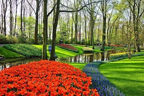 Private Sightseeing Tour to Keukenhof and the Windmills
