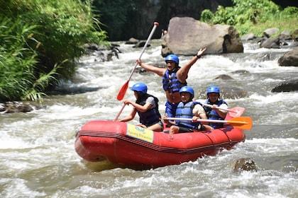 Ubud White Water Rafting With Lunch Bali Airasiago