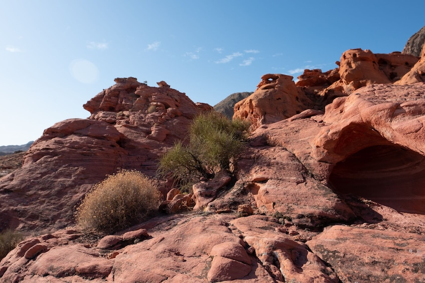 Show item 2 of 10. Bowl of Fire Hike in Lake Mead National Recreation Area