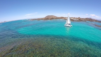 Exclusive sailing to Lobos Island