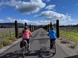 Half Day Sonoma Winery Bike Tour end w/ full day Bike Hire